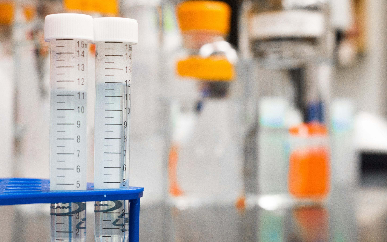 Big Data and Biomedical Research