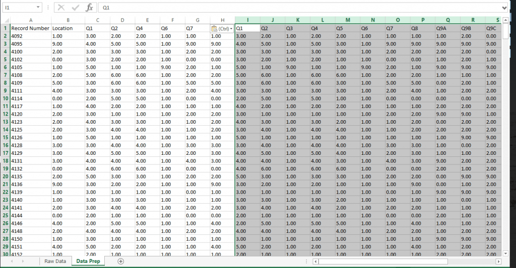 Survey Data for Tableau Analysis
