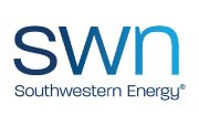 swn syntelli solutions inc