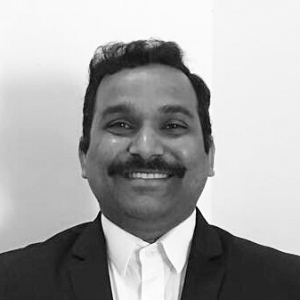 raja ramesh sr analytics associate syntelli solutions inc